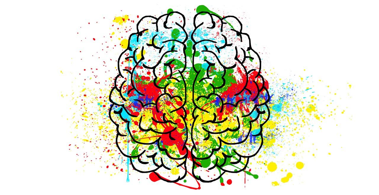 hiểu bộ não