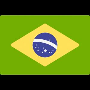 lá cờ brazil